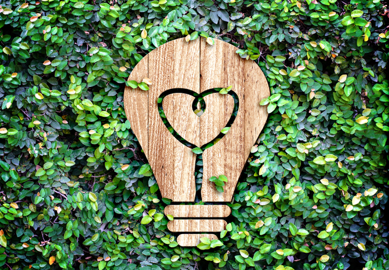 4 Household Alternatives That Can Save Environment
